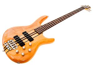 bas gitara električna